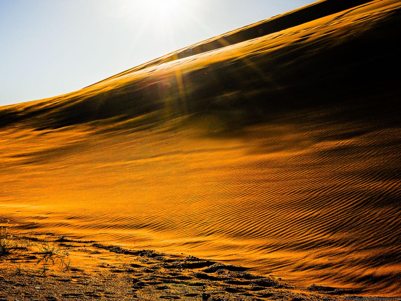 DBP__201106__namibia__121.jpg