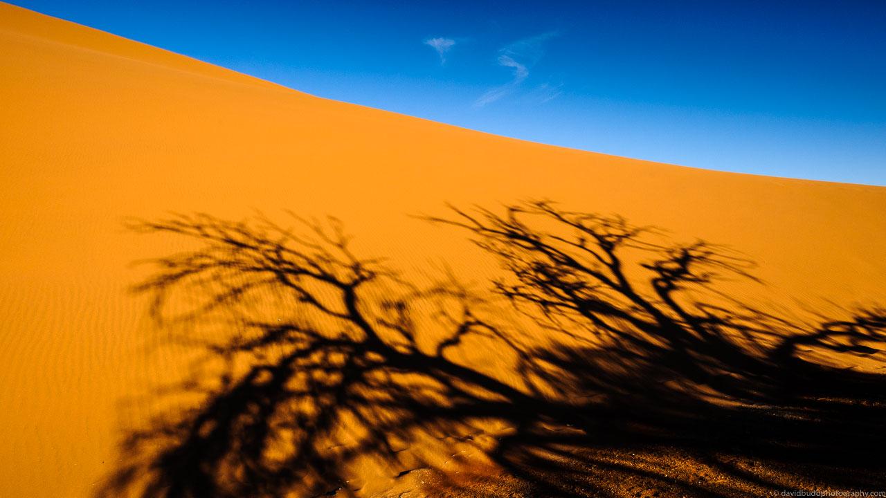 DBP__201106__namibia__139.jpg