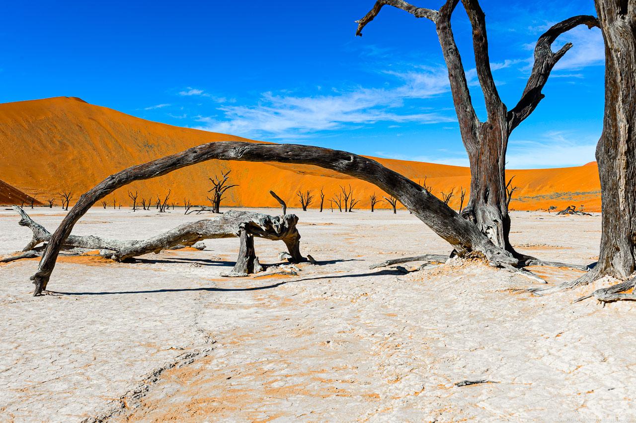 DBP__201106__namibia__163.jpg