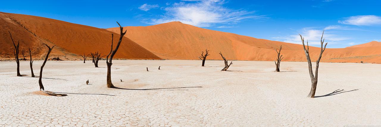 DBP__201106__namibia__182.jpg