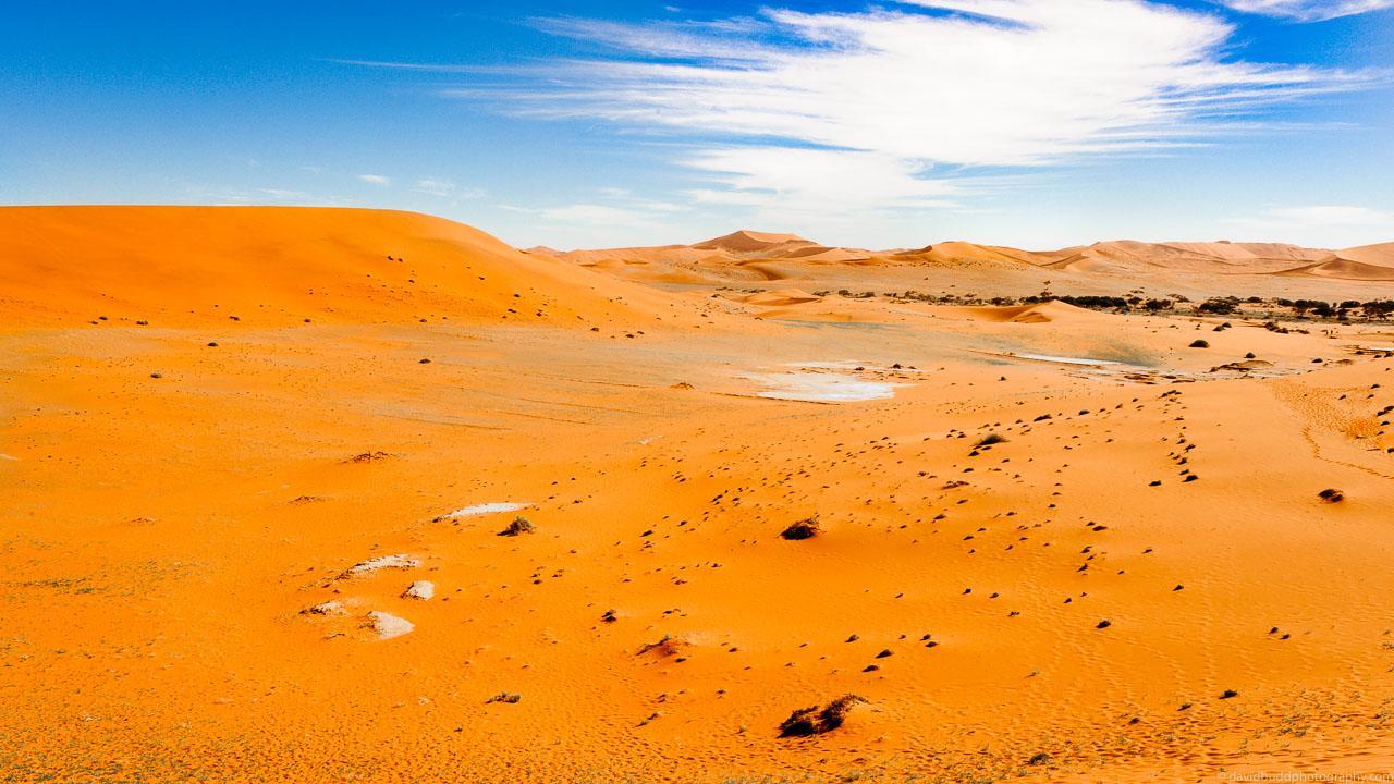 DBP__201106__namibia__257.jpg